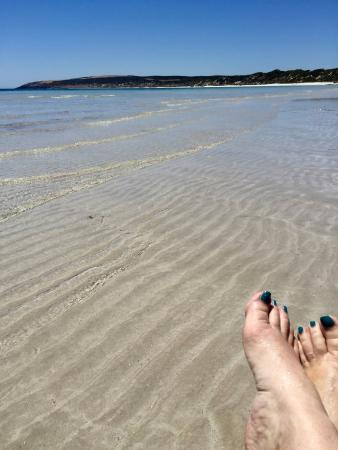 Kingscote, Australia: Emu Bay beach is 3km walk/cycle/drive. 4km of white sand and crystal clear water, with nobody th