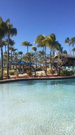 Hilton Aruba Caribbean Resort & Casino: Pool