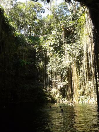 Que lindo que é o cenote Ikil
