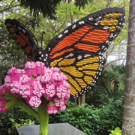 Lego butterfly picture of naples botanical garden - Botanical gardens naples florida ...