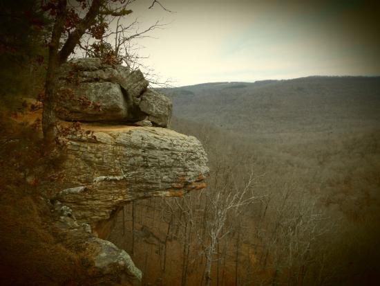 Arkansas : Beauty is everywhere.