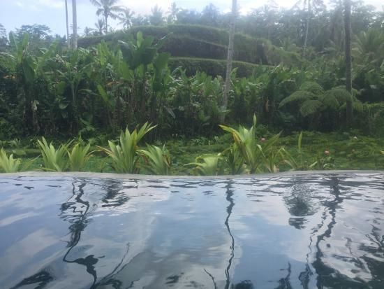 Foto de Tegalalang