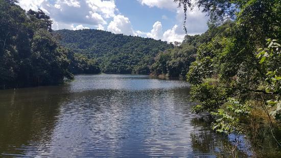 Parque Estadual Cantareira - Nucleo Engordador