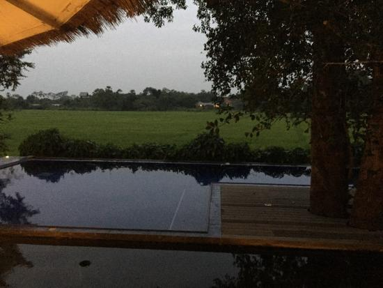 Thirappane, Sri Lanka: Villa 18 with views over rice paddy to main house with large, lovely pool.