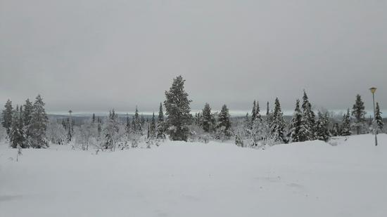 Lapland Hotel Pallas: Snapchat-6145327411219088288_large.jpg