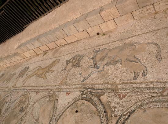 Aqueduct of Caesarea (Mei Kedem) : IMG_20160131_120446_large.jpg