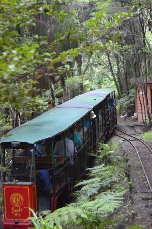 Coromandel, Νέα Ζηλανδία: Driving Creek Railway