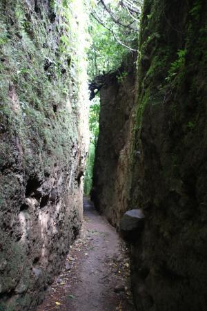 Mombacho Volcano: Tunnel
