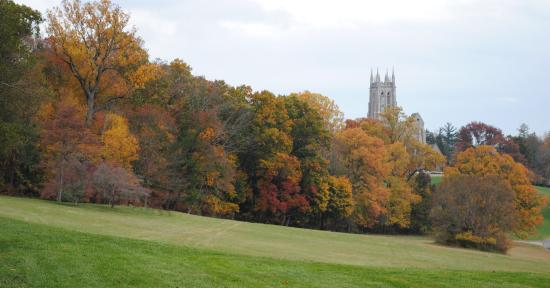 Bryn Athyn, Πενσυλβάνια: Early November Cathedral and foliage from pne part of the grounds