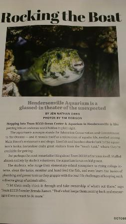Team ECCO Ocean Center & Aquarium: news article