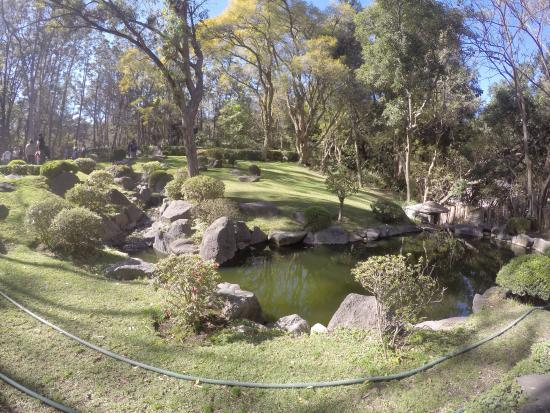 Jard n japon s picture of bosque colomos guadalajara for Jardin japones