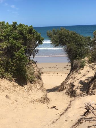 Torquay, Australia: There's lots of little places on the beach to sit and watch the world go by.