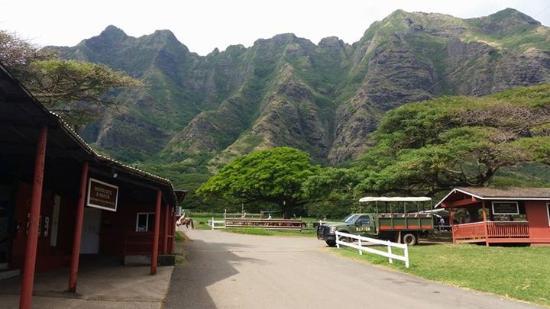 Kaneohe, Hawaï: Kualoa Ranch
