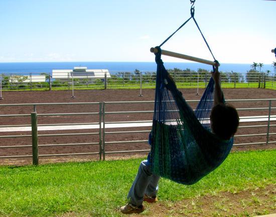 Kapaau, HI: Relaxing on Lanai