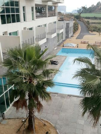 Y Resort Jeju
