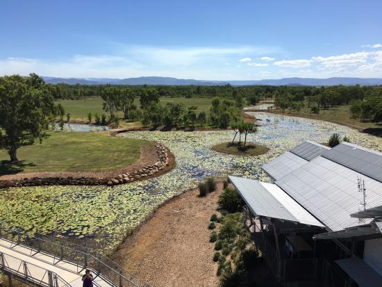 Ingham, Australia: Tyyo Wet Lands from Tower