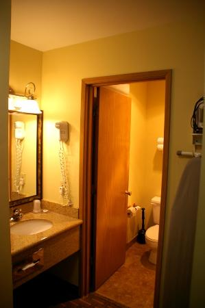 Sunset Motel Hood River: Bathroom with tub/shower and toilet; basin outside