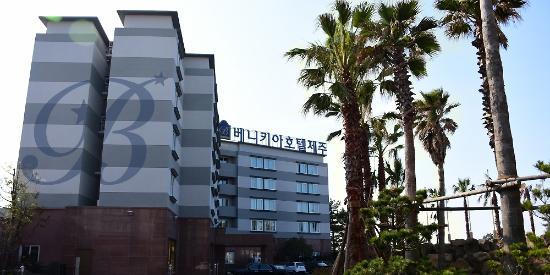 benikea hotel jeju 33 5 3 prices reviews south korea rh tripadvisor com