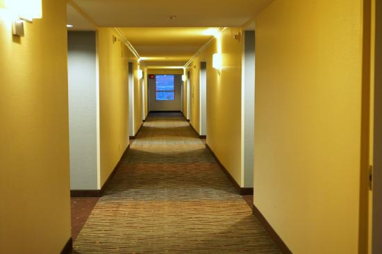 DoubleTree by Hilton Hotel San Diego - Mission Valley: Hotel hallway