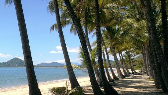Palm Cove, Australien: we are 2 minute short walk to the beach .