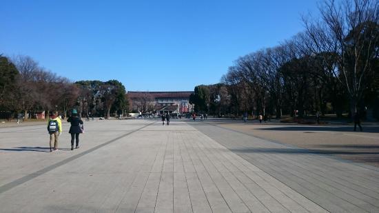 Tokyo National Museum: DSC_0024_large.jpg
