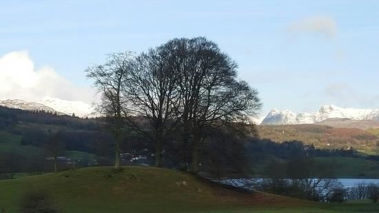 Sawrey, UK: 20160210_091306_large.jpg