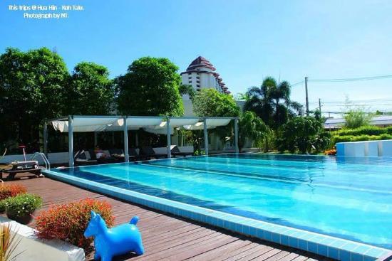 Seahorse Resort Resmi