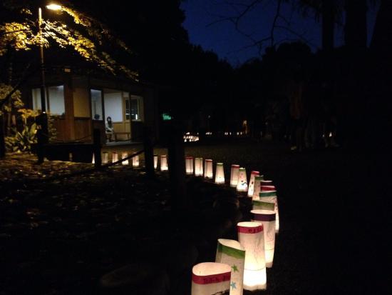 Suginami, Japan: 11月に開催されるキャンドルナイト
