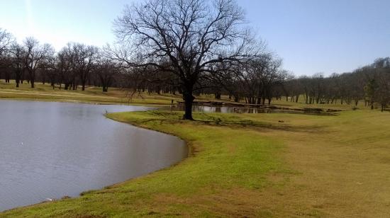 Cedar Creek صورة فوتوغرافية