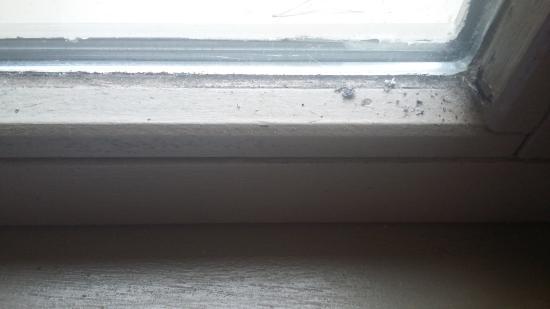 Chaumont-sur-Tharonne, France : bord de fenêtre chambre