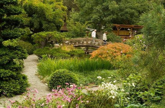 Campbell, CA: Hakone Garden