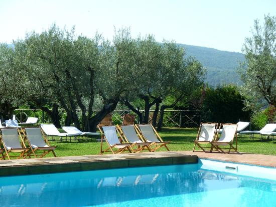 Torgiano, Italien: Swimming-pool