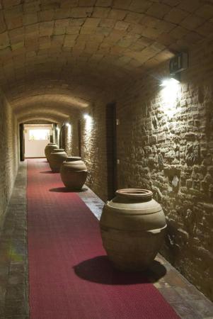 Torgiano, Ιταλία: Inside corridor