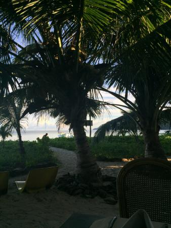 Anse Royale, Seychelles: вид за столиком ресторана на улице