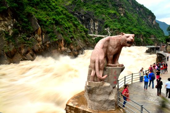 the tiger statue picture of tiger leaping gorge hutiao xia rh tripadvisor com