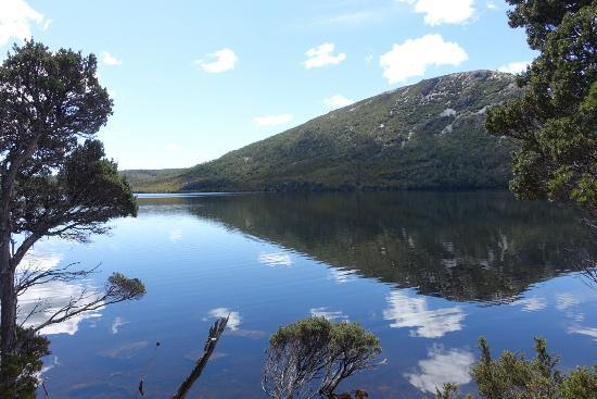 Cradle Mountain-Lake St. Clair National Park, Australia: LRG_DSC01962_large.jpg