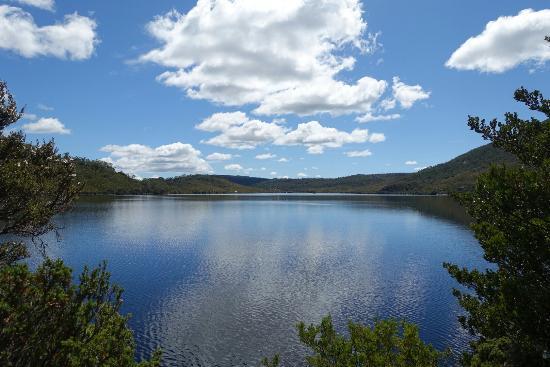Cradle Mountain-Lake St. Clair National Park, Australia: LRG_DSC01965_large.jpg