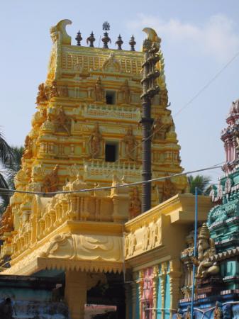 Amalapuram, India: Ainavilli temple