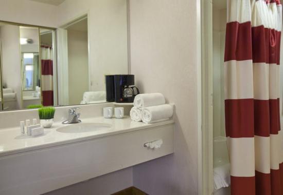 แองเกิลวูด, โคโลราโด: Suite Bathroom