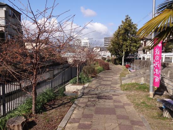 Yodoryokuchi Park