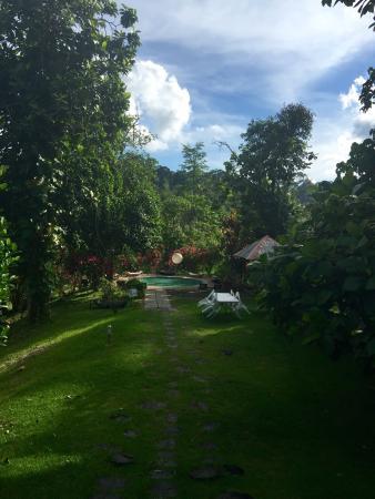 Sepilok, Malaysia: photo1.jpg
