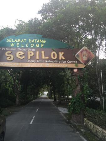 Sepilok, Malaysia: photo0.jpg