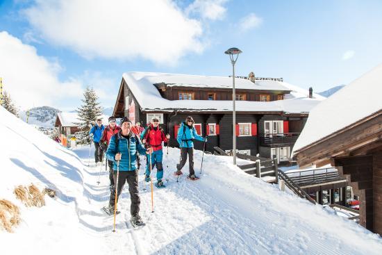 Riederalp, Suisse : Snow shoe wondering