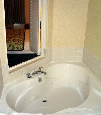 Bloomington, IL: King Spa Suite