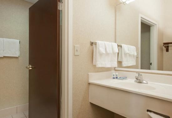 แอปเปิลตัน, วิสคอนซิน: Guest Bathroom