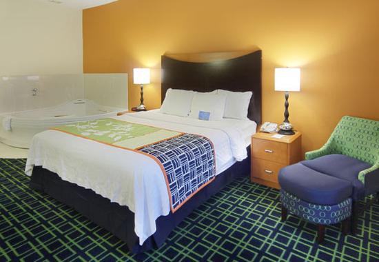 Okemos, MI: King Spa Guest Room