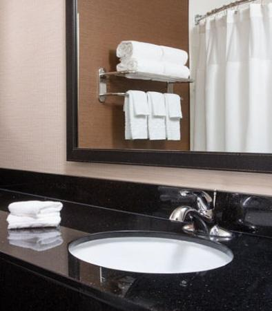 Tinley Park, IL: Suite Bathroom