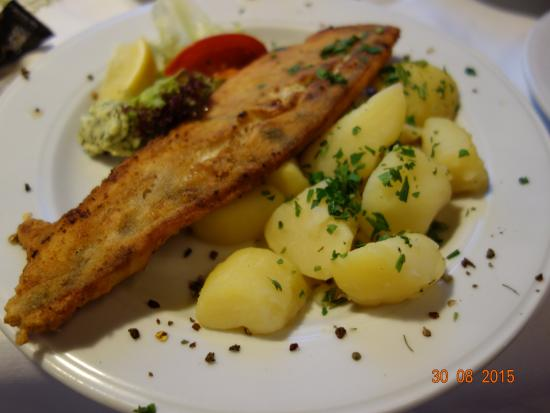 Krems an der Donau, Austria: Hidangan tradisional Austria: fillet ikan dan salad kentang