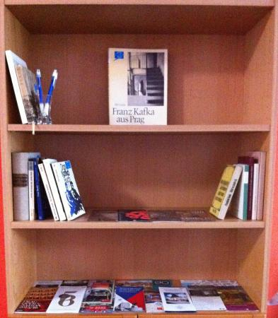 ARCO Guesthouse: One of our growing little room libraries
