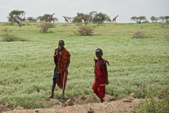 Ngorongoro Conservation Area, แทนซาเนีย: Giovani Masai a guardia del loro gregge